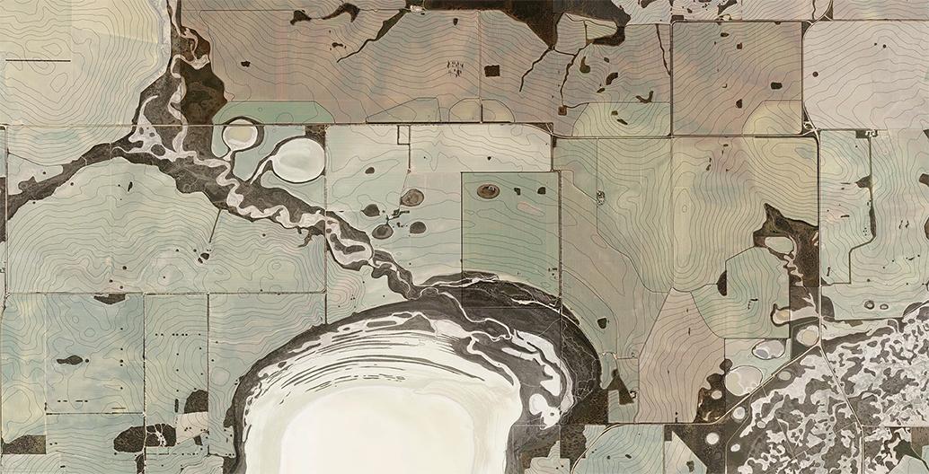 Remnant vegetation mapping.