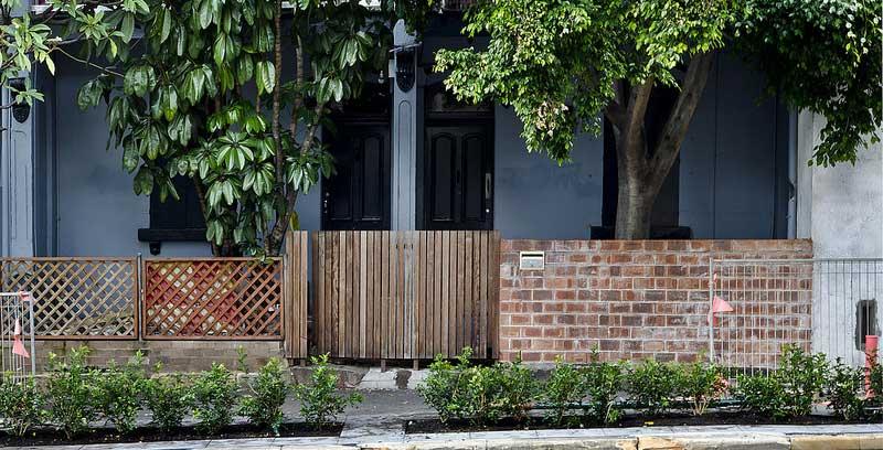 Freshly planted hedges line Cleveland Street in Redfern, Sydney.