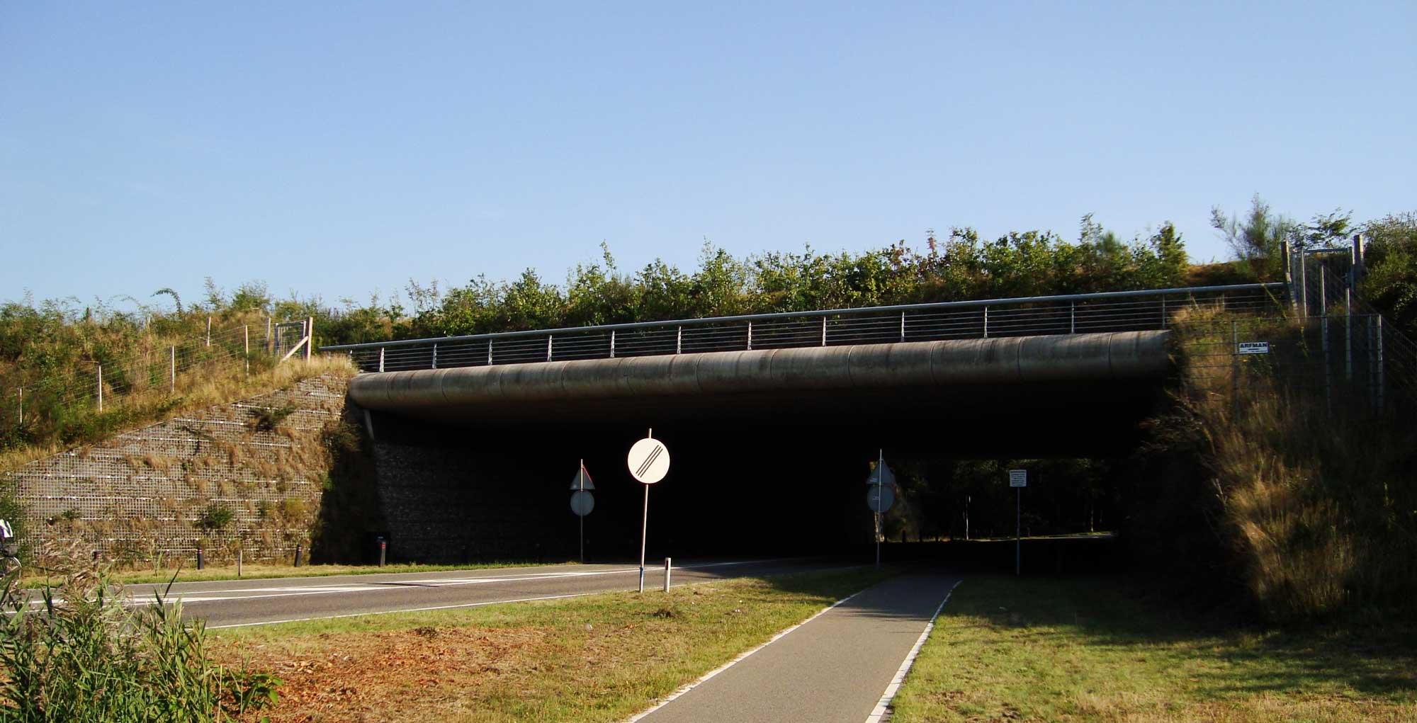 Wildlife crossing in Zanderij-Crailo-in-Hilversum, the-Netherlands.