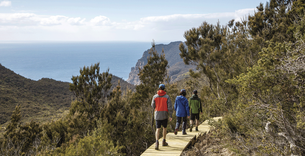 The Three Capes Track with a view. Image: Tasmania Parks and Wildlife Service