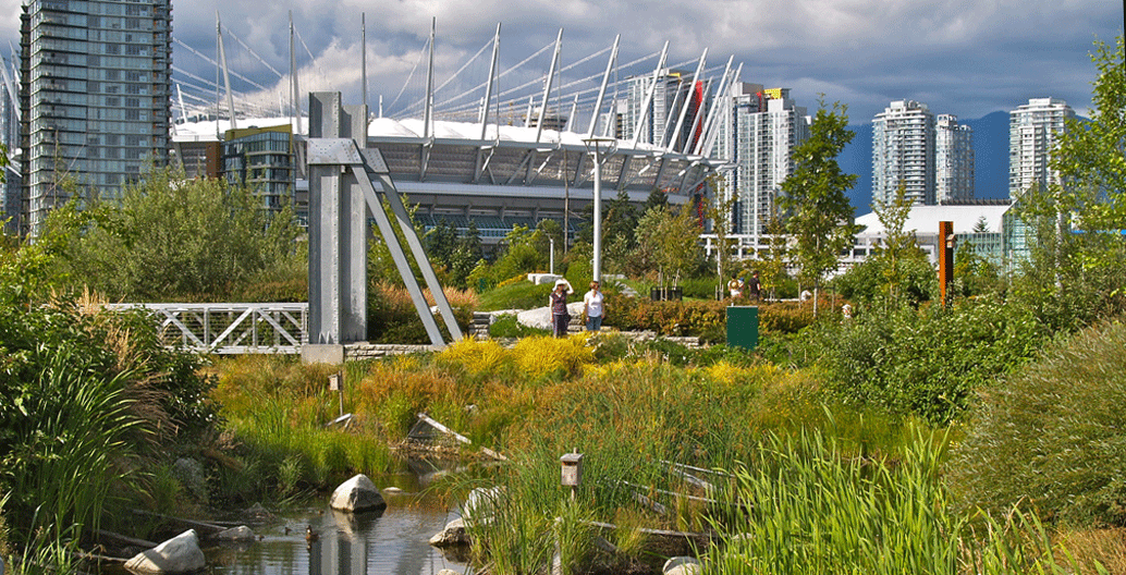 Vancouver's Olympic village for the 2010 games incorporated an urban wetland, flanked by 200 pieces of native vegetation.