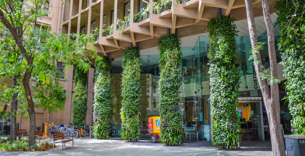Civic Landscape Architecture Award: Colonel Light Centre Forecourt Green Wall (City of Adelaide - Design & Strategy).
