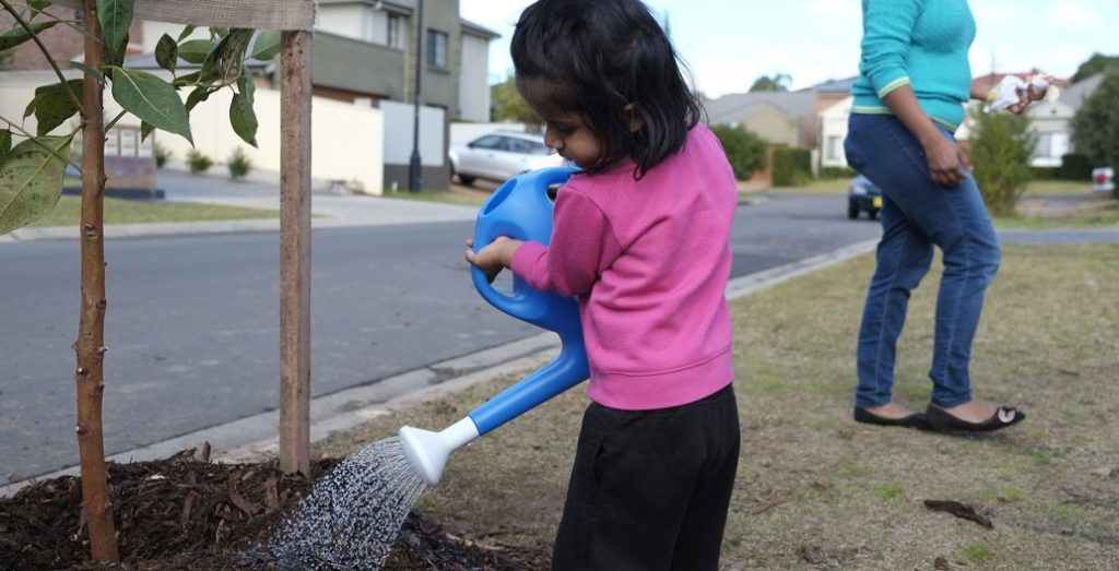 A young resident waters a freshly planted street-tree in Blacktown, NSW. Image: James Norton.