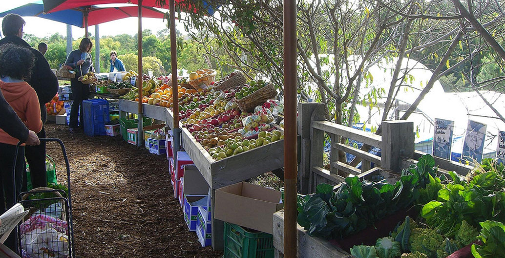 A farmer's market at CERES, a sustainability centre and urban farm in Melbourne.