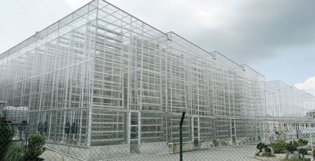 Sky Greens nine metre high vertical farm