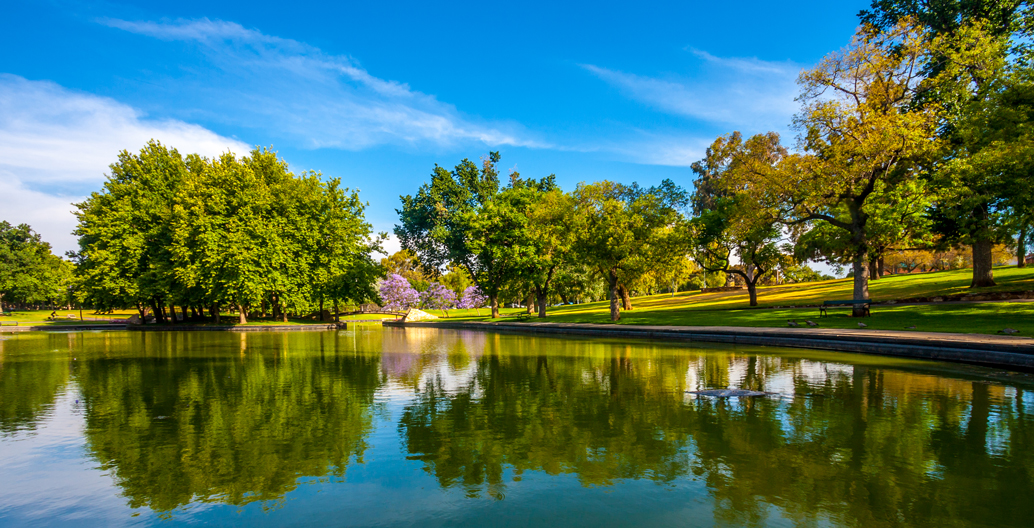 Rymill Park, Adelaide.