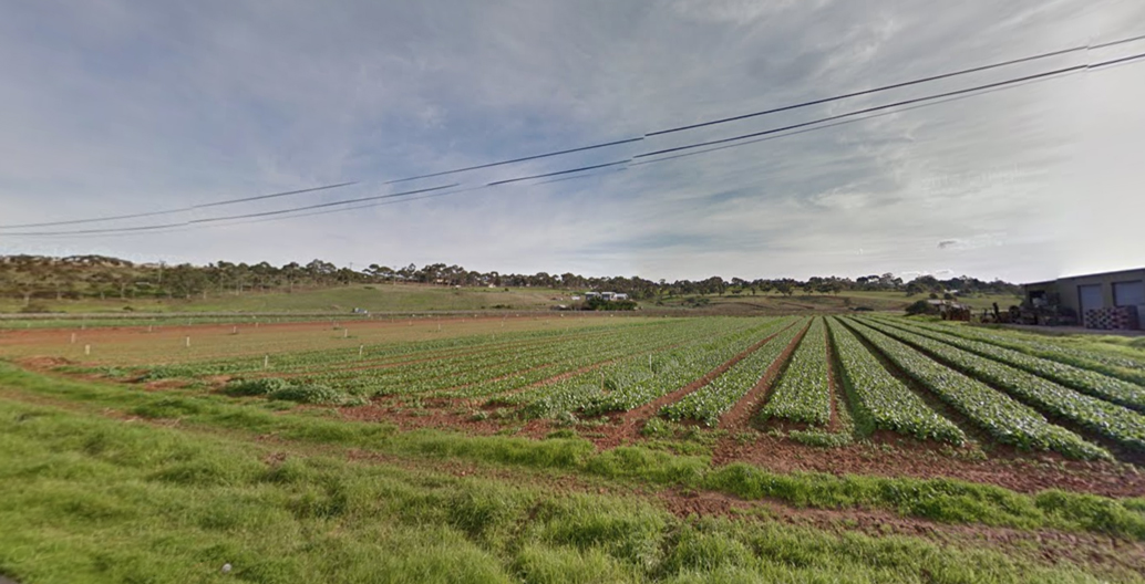 Farmland in Keilor, Melbourne.