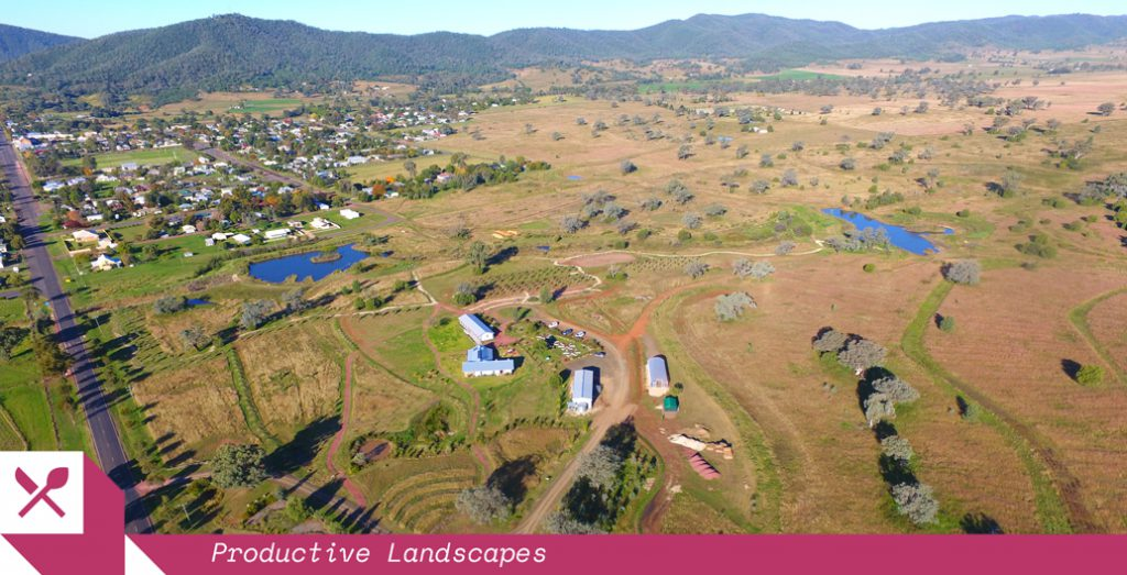 NSW's Living Classroom site wraps around the town of Bingara. The regenerative community farm repurposes a grazed common.