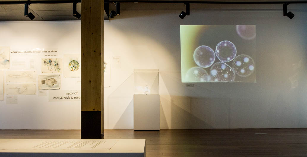 Part of the exhibition presents the microscopic life within drops of water.