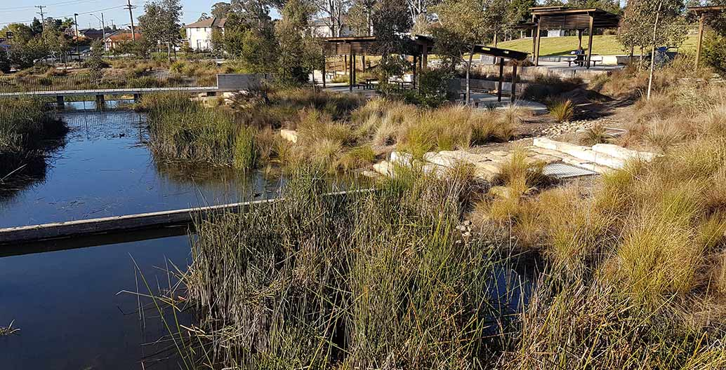 Blacktown Showground wetlands