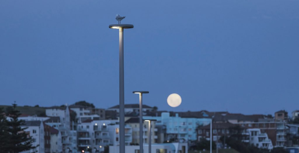 New lighting scheme aids nighttime journeys through Bondi Park.