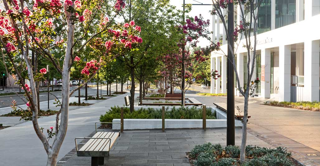 Constitution Avenue by Jane Irwin Landscape Architecture. 2018 AILA Act Excellence Award for Civic.