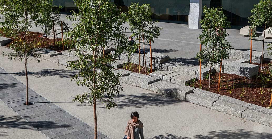 Civic landscape landscape architecture award: MADA West Courtyard by Glas Landscape Architects.