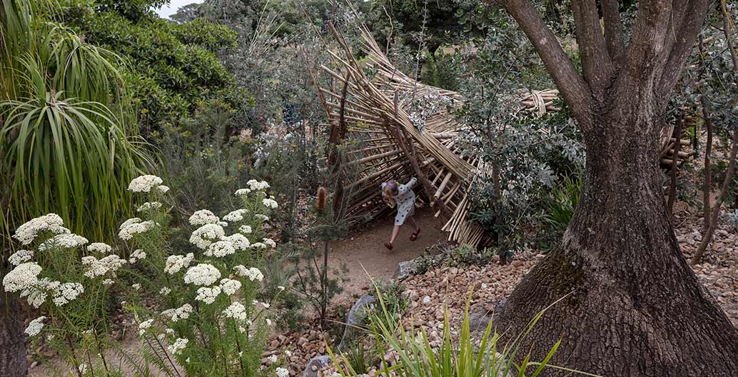 Ian Potter Children's WILDPLAY Garden. Image: Brett Boardman.