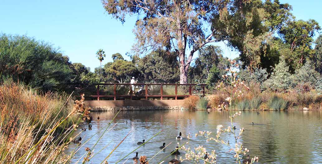 Oaklands Park and Wetland. Image: Sam Noonan.