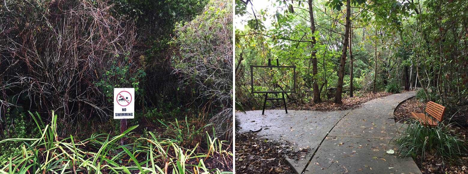 Overground vegetation in bioretention basin and surrounding urban recreational space, Smithfield Village, Cairns Image: Han She Lim