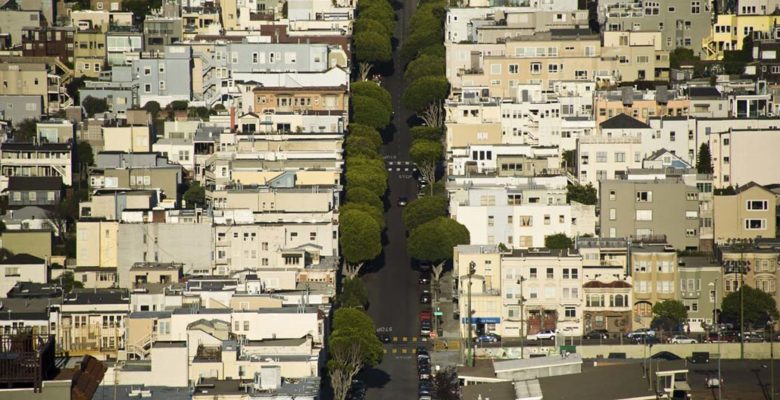 The multi-functional role of street trees as living city infrastructure is growing in importance. How can they benefit from smart technologies?