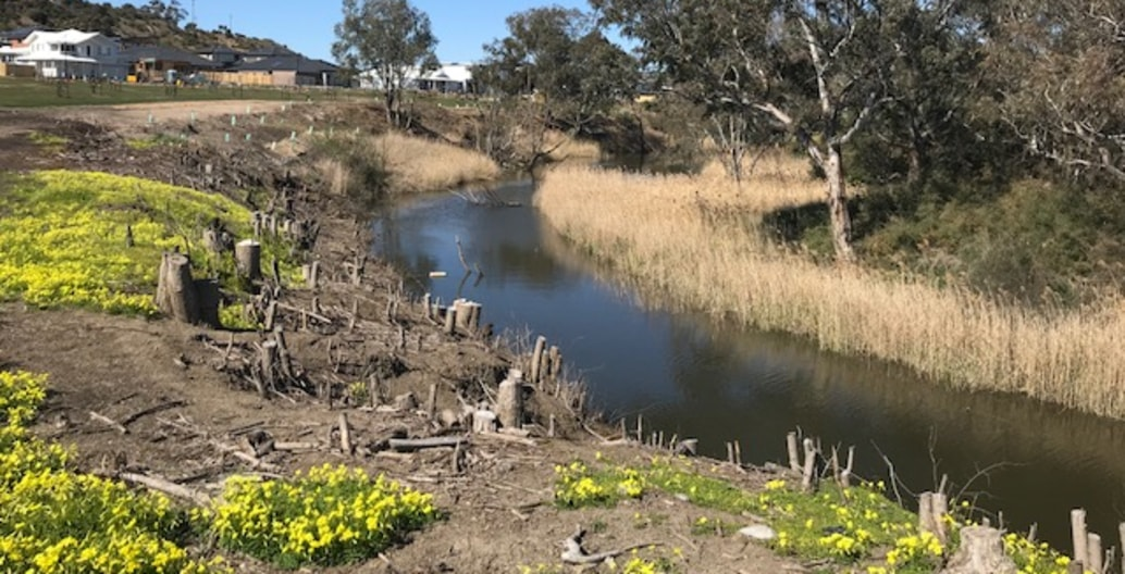 Early weed eradication on residential estate Gen Fyansford, near Geelong by Tract preparing for indigenous planting. Photo: Tract