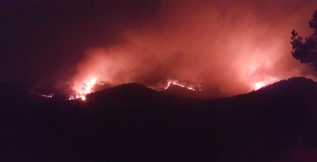 Tenterfield. The author's friend's farm burning in 2019. Photo: John Mongard