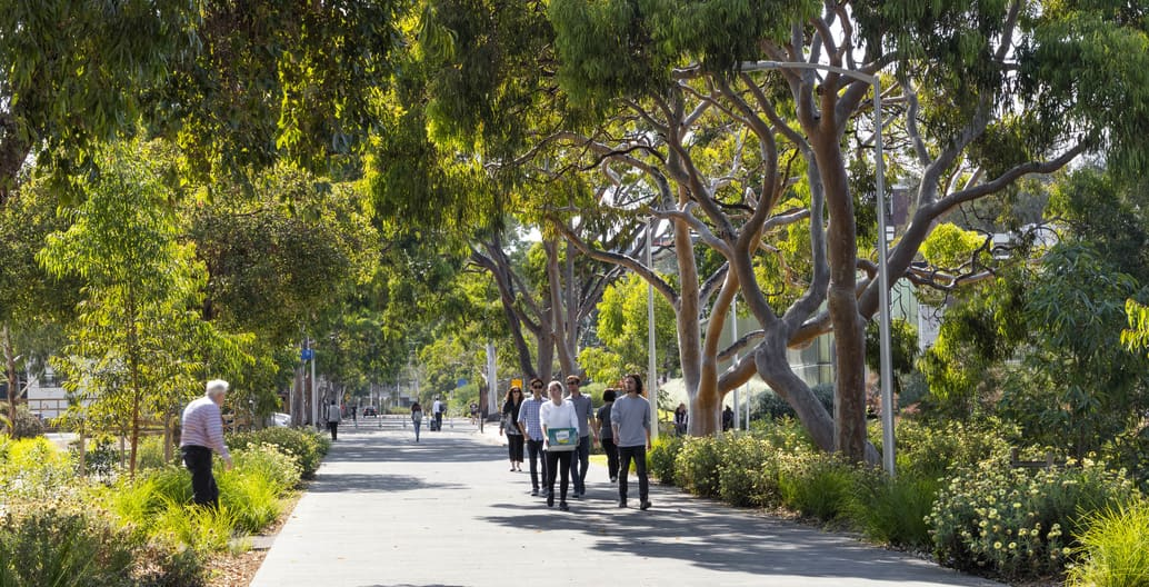 RWA's Western Precinct Landscape received an Urban Design award. Photo: John Gollings