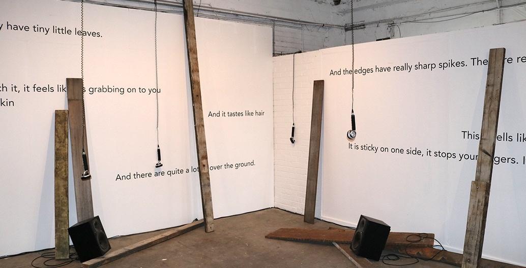 Exhibition. Lisa Hall + Salome Voegelin - And it Tastes Like Hair Photo: Jordan Lacey