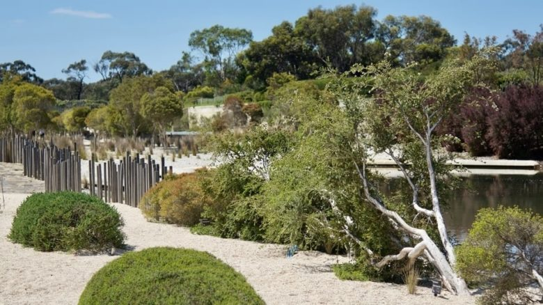 The Seaside Garden at the Royal Botanic Gardens, Cranbourne features newer planting that has been pruned and maintained as instructed by Paul Thompson. With TCL.