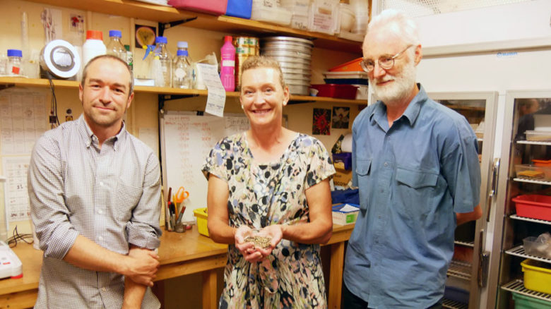 Dr Meg Hirst, who runs the Raising Rarity project, with Neville Walsh and DrAndre Messina at the Seedbank.