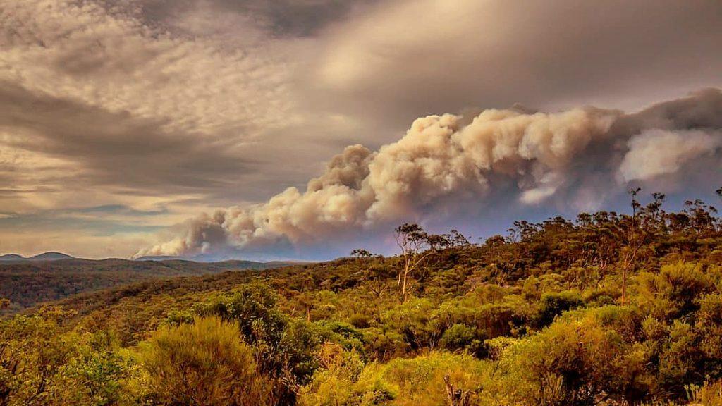 Gospers Mountain, NSW, December 2019. Photo: Meganesia via Wikimedia Commons