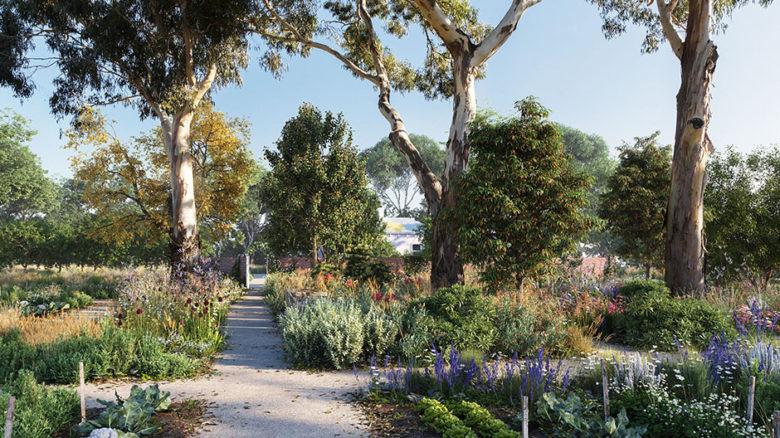 View of the Heide healing garden, looking towards the Heide 1 cottage. Image: Openwork