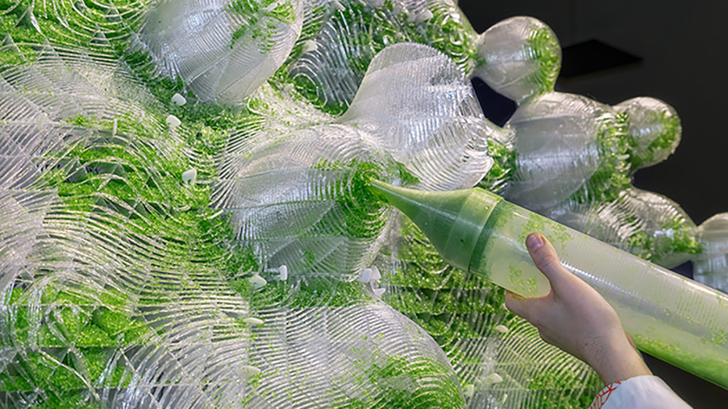 EcoLogicStudio's HORTUS XL, where a substratum inspired by coral supports photosynthetic cyanobacteria in a biogel medium. The cyanobacterias' metabolisms, powered by photosynthesis, convert radiation into oxygen and biomass.