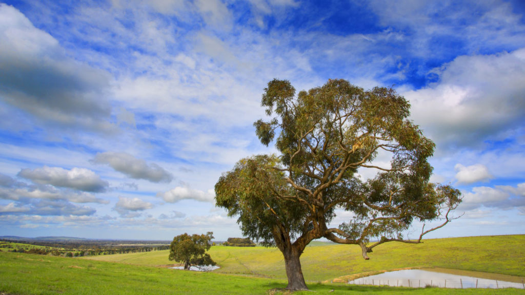 Quarry Hills Regional Parkland Landscape Master Plan City of Whittlesea