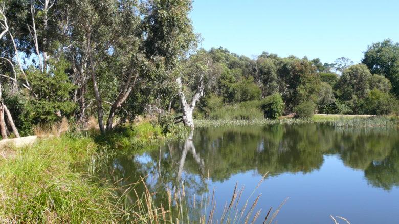 North Gardens Sculpture Park Landscape Master Plan, Ballarat. Winner of Cultural Heritage category.