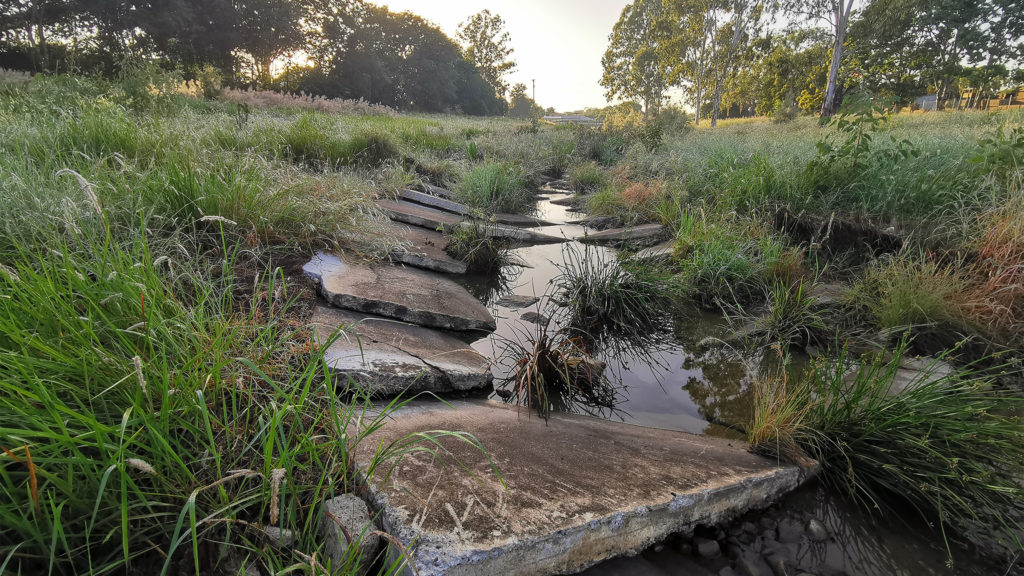 Landscapology and Bligh Tanner has transformed a drain into a living waterway at Small Creek, Ipswich. Image: Alan Hoban
