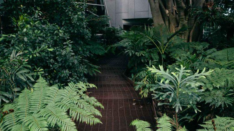 System Garden at University of Melbourne. Image: Tajette O'Halloran