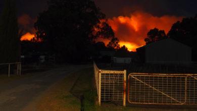 Bushfire in Australia.