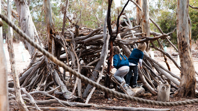 Para Wirra Nature Playspace—TCL. Image: Tash Mohring