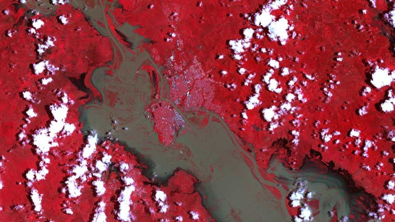 Infra-red satellite image of Rockhampton (white flecks in the middle) surrounded by the swollen Fitzroy River. Image: NASA Observatory, January 2011